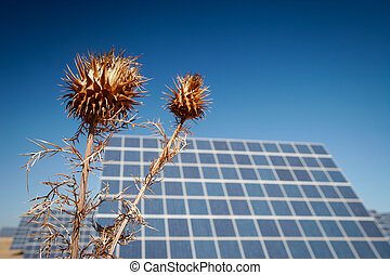 Sun Energy Farm - Stock Image - Modern sun energy farm solar...