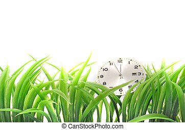 Sustainability - A clock lying in some blades of grass All...