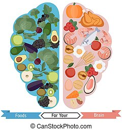 Brain Foods concept - Concept of food helpful for healthy...