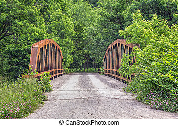 Old Pony Truss Bridge - A rusty old pony truss bridge...