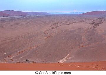 Sossusvlei: Namib desert