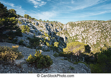 Beautiful nature of Calanques on azure coast of France High...