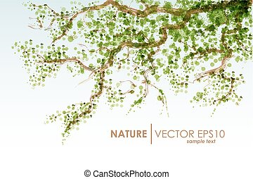 Natural background. Vector grunge. Tree branch with green leaves