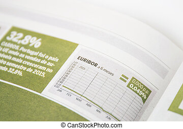 Close view of a graph of the reference rates from Euribor (Euro Interbank Offered Rate) on a newspaper.