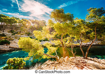 Nature of Calanques on the azure coast of France Calanques -...