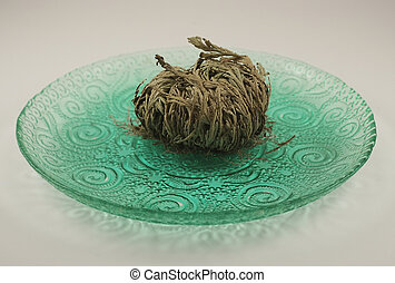 Rose of Jericho is a widely used religous symbol for the...