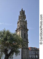 An olive tree and the Clerigos tower in Porto, Portugal