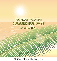 Summer background - a tropical paradise. Palm branch on a backgr