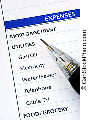 List various monthly expenses in the budget