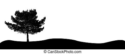 Single Tree - A single tree. All isolated on white...