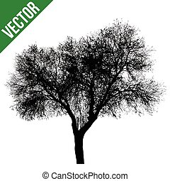Dead tree silhouette on white background, vector...