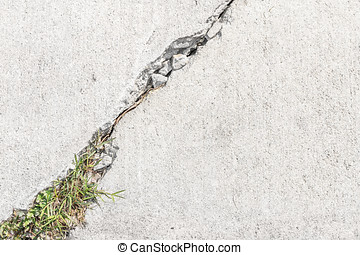 Grass and weeds growing in cracked sidewalk - Close up, top...