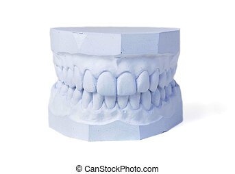 Plaster cast of set of teeth - A plaster cast in blue tone...