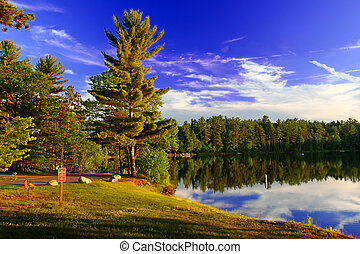 Northwoods Wisconsin Campground - Evening sunlight...