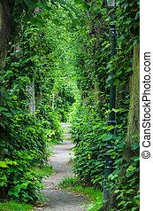 Green Tunnel, Wall Barbarossa Dusseldorf Kaiserswerth. -...