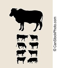 Cow Silhouettes, art vector design