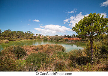 Wide view of a lake for birdwatching in the Ria Formosa...