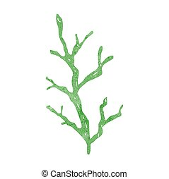 retro cartoon seaweed - freehand retro cartoon seaweed