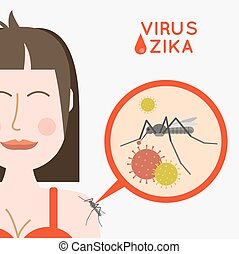 Virus zika vector illustration. Mosquito infected with zika virus, infects a girl