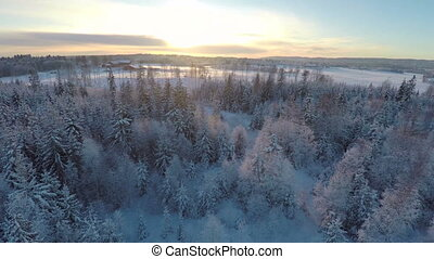 Flying high above the winter forest in sunset - Camera...