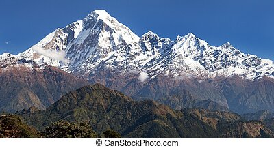 panoramatic view from Jaljala pass to Dhaulagiri Himal -...