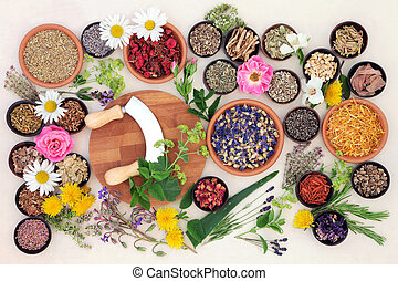 Natural Flower and Herb Medicine - Natural flower and herb...