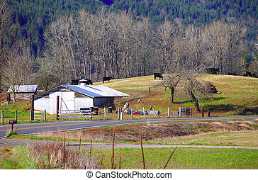 Old shack and pastures - Old shack pastures and field with...