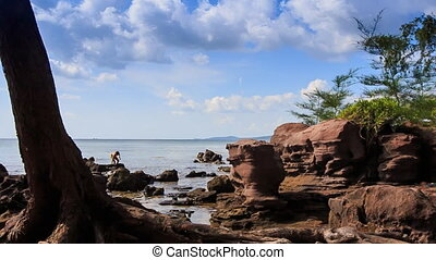 Rocks on Beach with Tree Trunk People at Background