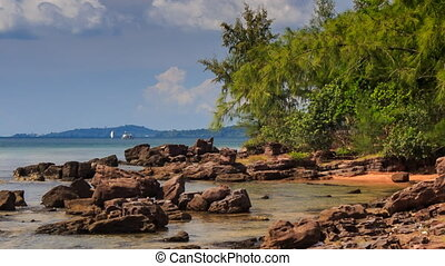 Rocks in Shallow Water near Beach with Tropical Plants -...