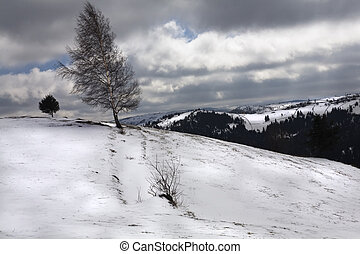 Knoll - Landscape after a big snowstorm, in the mountains
