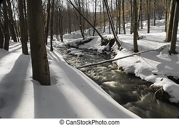 Brook in the snow - Icy stream, deep in the forest,...