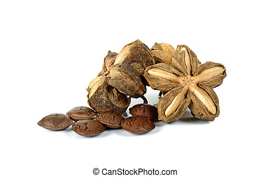 Star incas isolated on the white background.