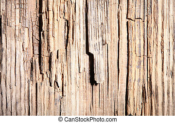 old rotten wood texture. hard light - texture of the old...