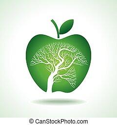 apple tree isolated - apple tree isolated on White...