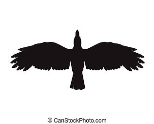 a crow symbol - This is an illustration of a crow symbol
