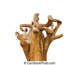 hada, dragón, Monstruos, hecho, De, el, raíz, de, el,...