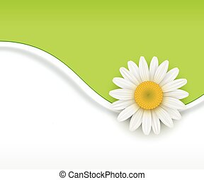 Green flower Background - Green Background with white...