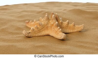 Starfish on sand, white, rotation, closeup - Starfish on...