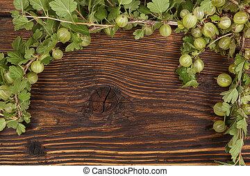 Green gooseberries - Green gooseberries with green leaves on...