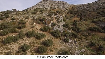 4K Aerial, Flight along mountains and olive plantations,...