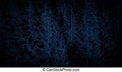 Aerial Over Dense Forest At Night - High angle view looking...