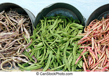 String beans - Fresh picked string beans picked from the...