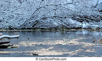 Willow Creek Winter Scene Illinois - Willow Creek flows...