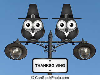 Thanksgiving - Comical Pilgrim Father birds perched on a...