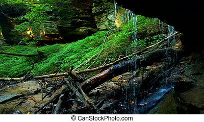 Shades State Park Maidenhair Falls - Waterfall landscape...