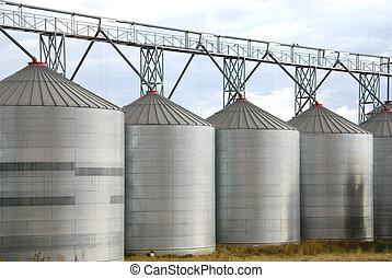 Grain Silos - Galvenised Iron grain silos on a farm in...