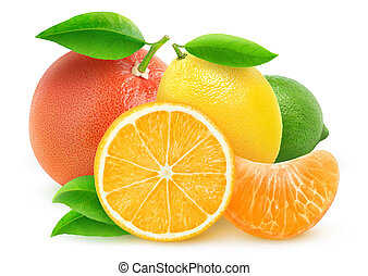 Isolated citrus fruits - Various citrus fruits isolated on...