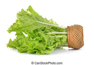 lettuce leaves in the basket isolated on white background