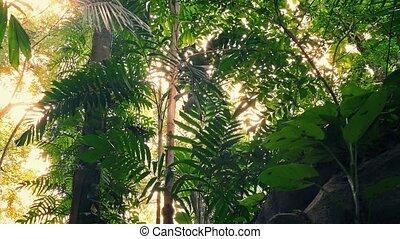 Moving Under Huge Jungle Plants - Gliding underneath large...