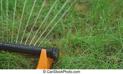 Equipment for watering lawns - Lawn sprinkler spaying water...